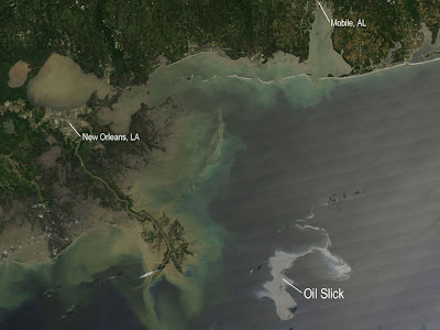 Read more about the article NASA zeigt den riesigen Ölteppich vom Golf von Mexiko vor New Orleans.