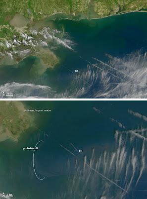 Read more about the article NASA zeigt schockierende Satellitenbilder von der Ölkatastrophe im Golf von Mexiko