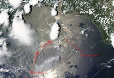 Read more about the article ESA zeigt erschreckendes Satellitenbild des Ölteppich im Golf von Mexiko