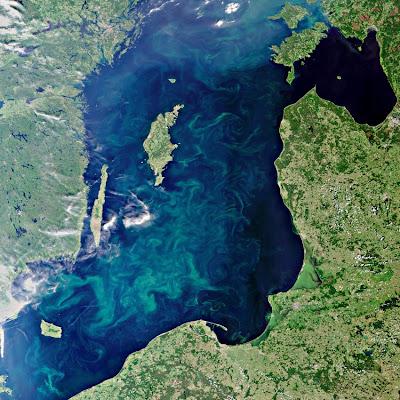 Read more about the article ESA veröffentlicht Satellitenbild der Ostsee – Plankton wächst explosionsartig!